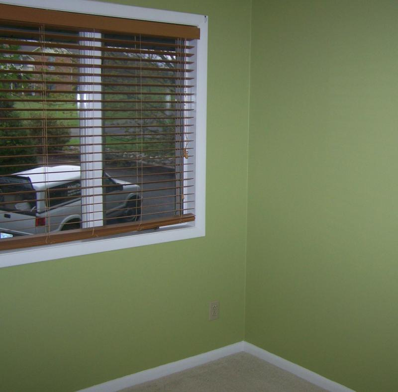 Your Denver Metro Construction Mint Green used in Spare Bedroom